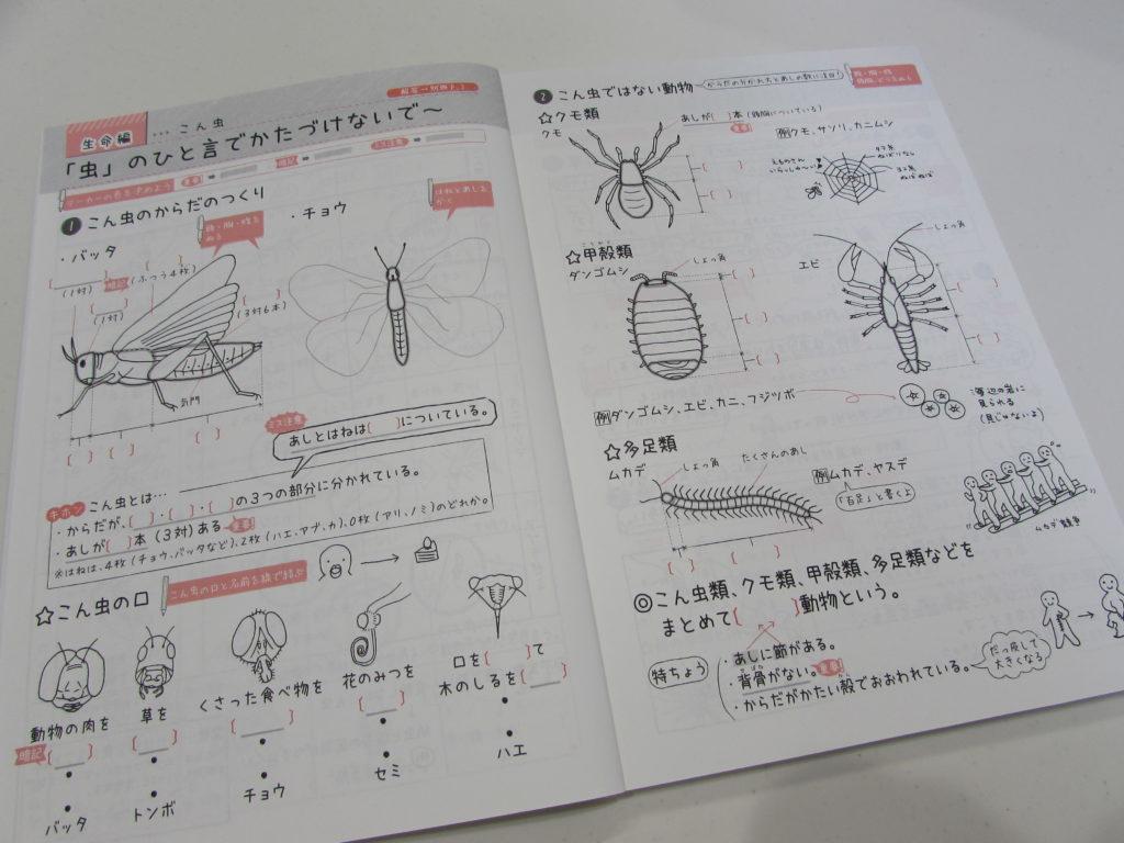 自分でつくれるできる子ノートで定着!2